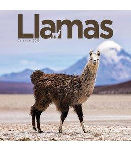 CarouselCalendars Llamas Kalender 2019