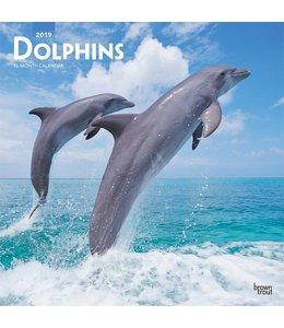 Browntrout Dolfijnen Kalender 2019