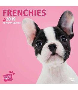 Browntrout Franse Bulldog Kalender 2019 Myrna