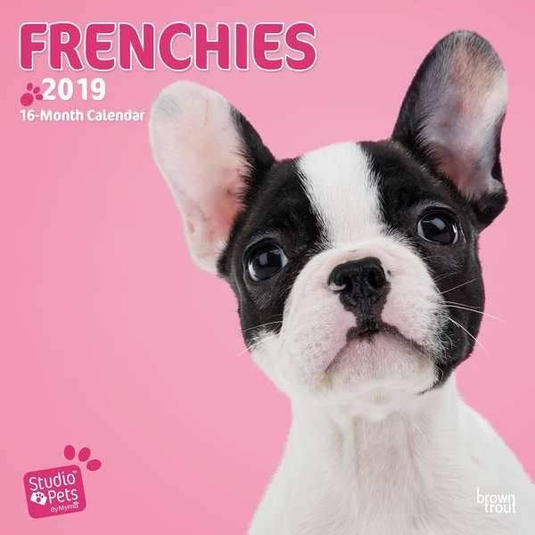 Franse Bulldog Kalender 2019 Myrna