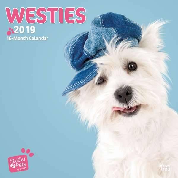 West Highland White Terrier Kalender 2019 Myrna