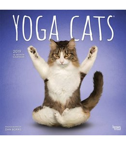 Browntrout Yoga Cats Kalender 2019