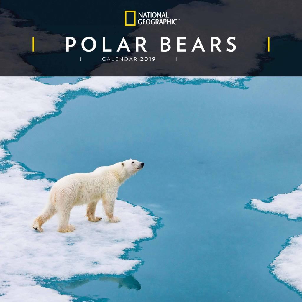 IJsberen Kalender 2019 National