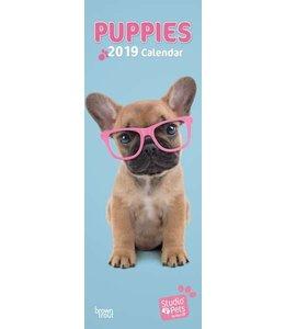 Browntrout Puppies Studio Pets Kalender 2019 Slimline