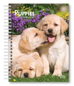 Browntrout Puppies Agenda 2019