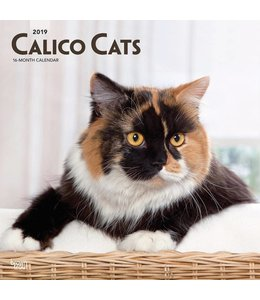 Browntrout Calico Katten Kalender 2019