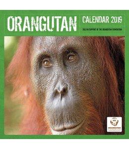 CarouselCalendars Orangutan Kalender 2019