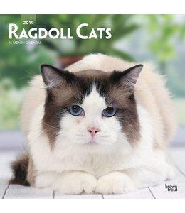 Browntrout Ragdoll Kalender 2019