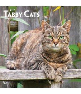 Browntrout Tabby Katten Kalender 2019
