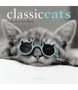 Graphique de France Classic Cats Mini Kalender 2019
