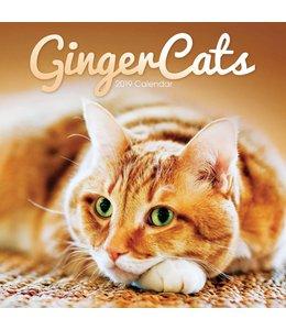 CarouselCalendars Rode Katten Kalender 2019