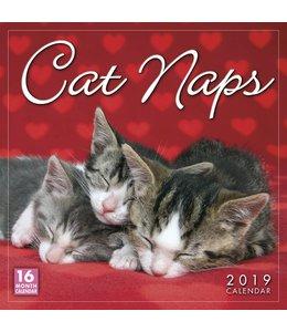 Sellers Publishing Cat Naps Kalender 2019