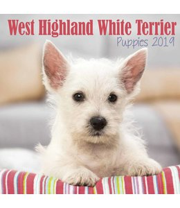 Avonside West Highland White Terrier Kalender 2019 Mini