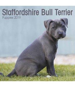 Avonside Staffordshire Bull Terrier Kalender 2019 Mini