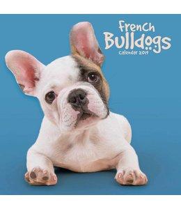 CarouselCalendars Franse Bulldog Kalender 2019 Mini