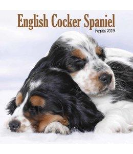 Avonside Engelse Cocker Spaniel Kalender 2019 Mini