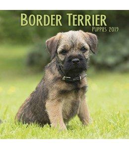 Avonside Border Terrier Kalender 2019 Mini