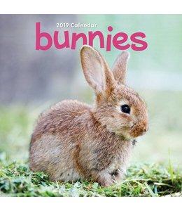CarouselCalendars Bunnies Kalender 2019 Mini
