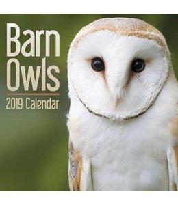 CarouselCalendars Uilen Kalender 2019 Mini