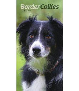 CarouselCalendars Border Collie Pocket Agenda 2019