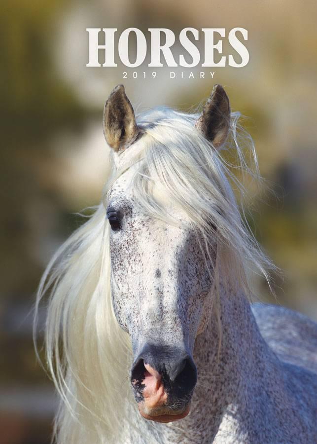 Paarden Agenda 2019