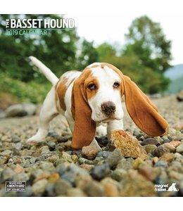 Magnet & Steel Basset Hound Kalender 2019