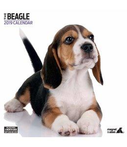 Magnet & Steel Beagle Kalender 2019 Modern