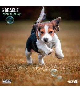 Magnet & Steel Beagle Kalender 2019