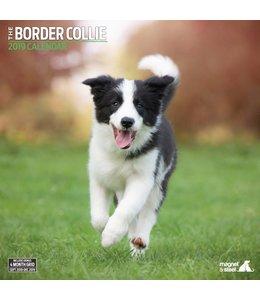 Magnet & Steel Border Collie Kalender 2019