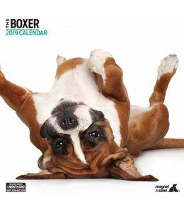 Magnet & Steel Boxer Kalender 2019 Modern