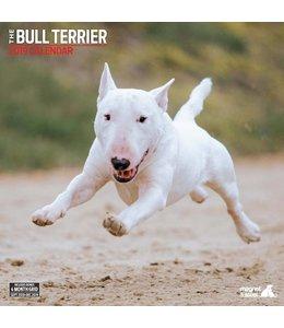 Magnet & Steel Bull Terrier Kalender 2019
