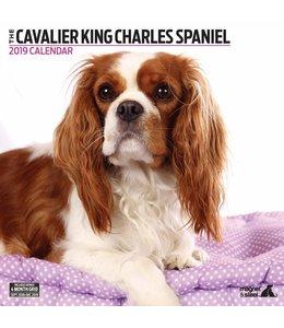 Magnet & Steel Cavalier King Charles Spaniel Kalender 2019 Modern