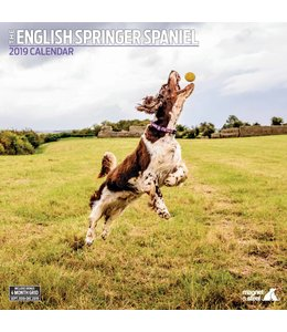 Magnet & Steel Engelse Springer Spaniel Kalender 2019