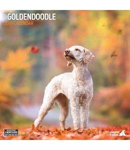 Magnet & Steel Goldendoodle Kalender 2019