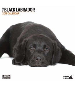 Magnet & Steel Labrador Retriever Zwart Kalender 2019 Modern