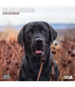 Magnet & Steel Labrador Retriever Zwart Kalender 2019