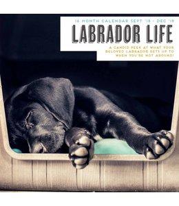 Magnet & Steel Labrador Retriever Kalender 2019 The Secret Life