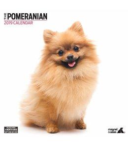 Magnet & Steel Pomeranian Kalender 2019 Modern