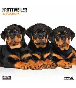Magnet & Steel Rottweiler Kalender 2019 Modern