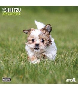 Magnet & Steel Shih Tzu Kalender 2019