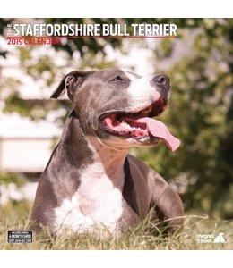 Magnet & Steel Staffordshire Bull Terrier Kalender 2019