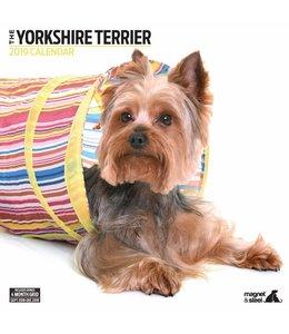 Magnet & Steel Yorkshire Terrier Kalender 2019 Modern