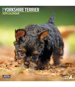 Magnet & Steel Yorkshire Terrier Kalender 2019