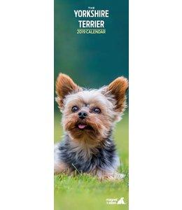 Magnet & Steel Yorkshire Terrier Kalender 2019 Slimline