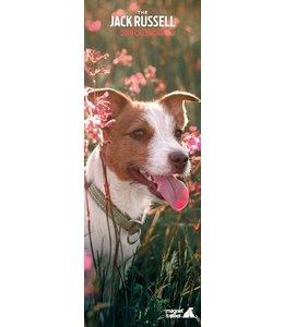 Magnet & Steel Jack Russell Terrier Kalender 2019 Slimline