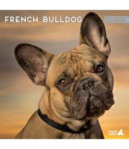 Magnet & Steel Franse Bulldog Kalender 2019 Deluxe