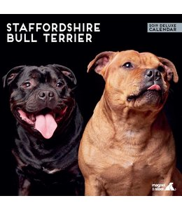 Magnet & Steel Staffordshire Bull Terrier Kalender 2019 Deluxe