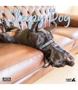 Magnet & Steel Sleepy Dog Kalender 2019