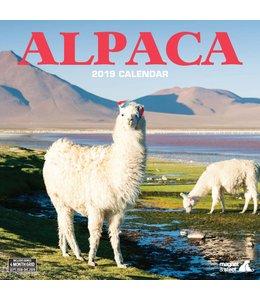 Magnet & Steel Alpaca Kalender 2019