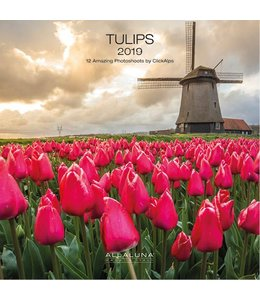 Allaluna Tulpen - Tulips Kalender 2019